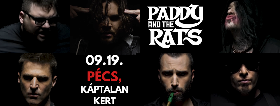 Paddy and the Rats - Pécs